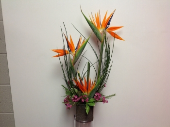 Funky Stuff Flower arrangement - $70.00