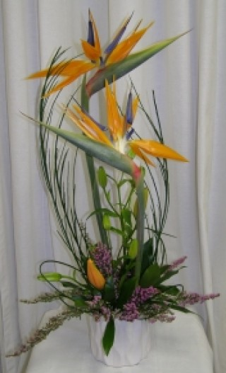 Dream Paradise floral Design - $60.00
